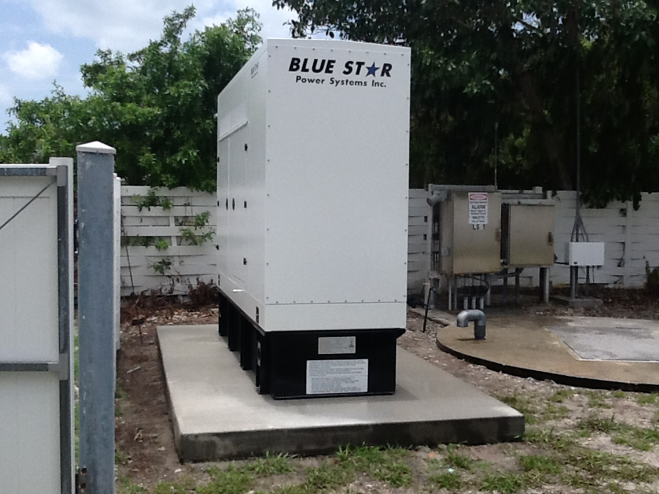 Mid Florida Diesel Projects: 125 KW Blue Star Diesel Generator
