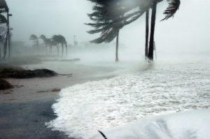 Could Diesel Power Be Your Saving Grace During Hurricane Season